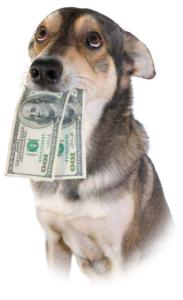 Hond met geld in zijn bek