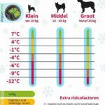 Temepratuurtabel honden