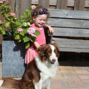 kindren en honden training