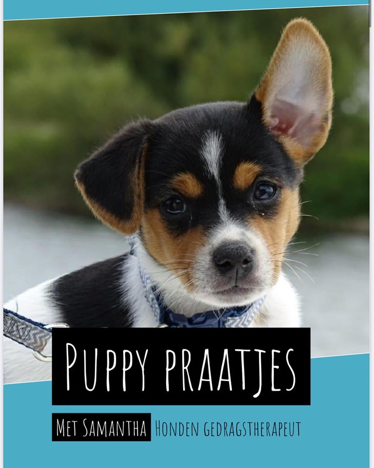 Puppy praatjes boek hondenschool Utrecht