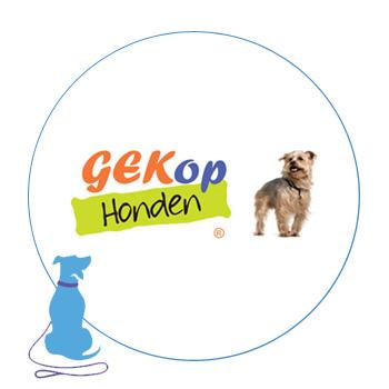 Hondenschool Utrecht samenwerking gek op honden