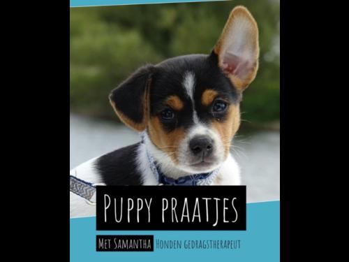 Boek-puppy-praatjes